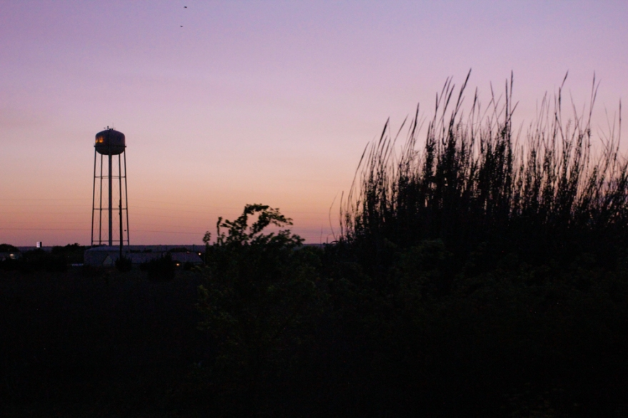 TexasLandscape_April2018_3
